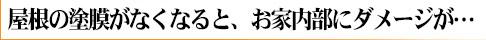 yane_damage_logo_11.jpg