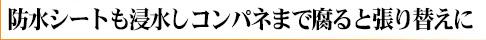 yane_damage_logo_9.jpg