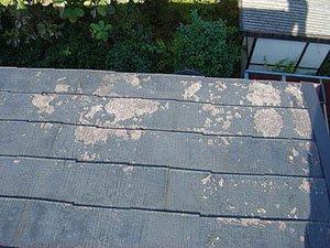 傷みの進んだ屋根2.jpg