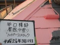 にっさいT様邸屋根中塗り.jpg