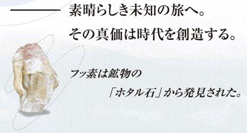 ニッペ・ファイン4Fセラミック ホタル石
