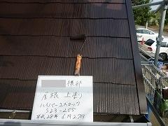 H28.10月所沢市S様邸玄関屋根塗装上塗り.jpg