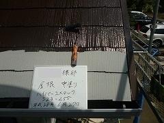 H28.10月所沢市S様邸玄関屋根塗装中塗り.jpg