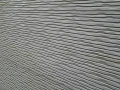 H28.11月所沢市K様邸外壁塗装屋根塗装施工前コケ.jpg
