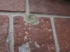 H28.12月入間市O様邸外壁屋根塗装施工前サイディング剥がれ