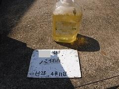 H28.9月川越市S様邸外壁屋根塗装洗浄バイオ液