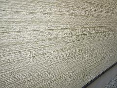 H29.2月さいたま市W様邸外壁塗装屋根塗装施工前外壁コケ.jpg
