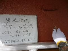 H29.3月さいたま市渡辺様外壁塗装上塗り②