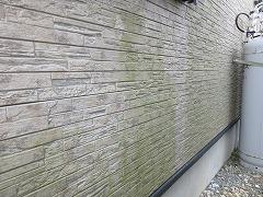 H29.4月北本市松本様邸外壁塗装施工前コケ.jpg
