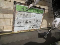 H29.4月草加市守岡様邸外壁・屋根塗装付帯塗装シャッターボックス.jpg